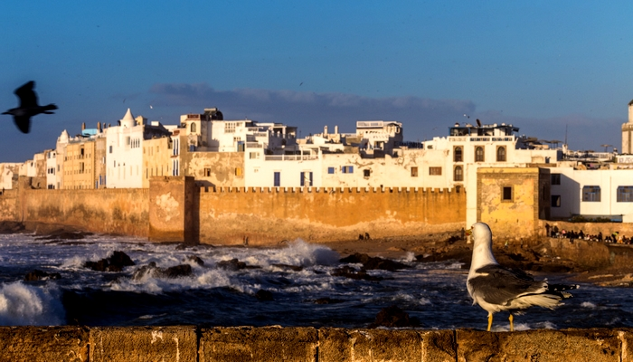 essaouira day excursion